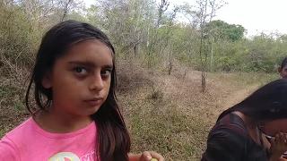 Download Educando a Nallely a pedir las cosas con la palabra mágica ″Por Favor″ . Mision Paloma. Parte 7 Video