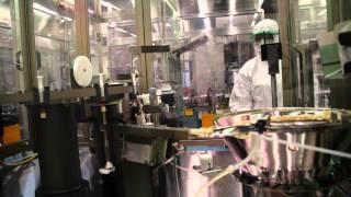 Download Vaccine production process at BIVI Video