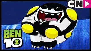 Download ¡El salpicón extremo! | Ben 10 en Español Latino | Cartoon Network Video