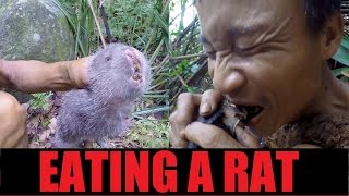 Download Hunting and eating a RAT | Tarzan Documentary (3 of 11) Video