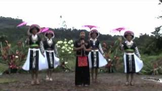 Download Cacao video 3 French Guiana Nkauj Hmoob dancer Video