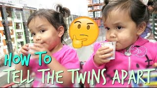 Download How To Tell Miya and Keira Apart - September 28, 2016 - ItsJudysLife Vlogs Video
