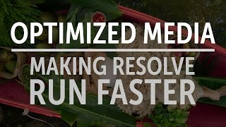 Download Making DaVinci Resolve Run Faster: Optimized Media Video