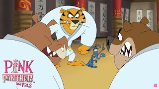 Download Aard Fu | The Ant and the Aardvark | Pink Panther and Pals Video