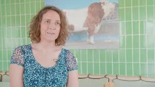Download BVN Spermaproduktion und Besamung Video