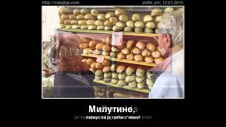 Download Vukajlija - najbolji posteri Video