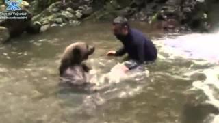 Download vahşi ayı ile derede oyun oynamak | play the game with bear Video
