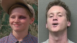 Download The Stars Of The Sandlot Have Changed A Lot Since 1993 Video