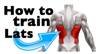 Download How to: Train the Latissimus Dorsi (11 gym exercises) Video