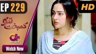 Download Drama   Kambakht Tanno - Episode 229   Aplus ᴴᴰ Dramas   Tanvir Jamal, Sadaf Ashaan Video