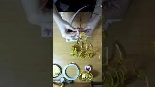 Download Cây đồng tiền cho người mới tập làm - hoa voan Thiên Hoa Video