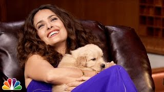 Download Pup Quiz with Salma Hayek Video