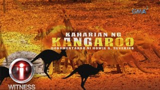 Download I-Witness: 'Kaharian ng Kangaroo,' a documentary by Howie Severino (with English subtitles) Video