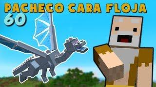 Download Pacheco cara Floja 60 | COMO INVOCAR UN DRAGÓN DE HIELO en Minecraft Video