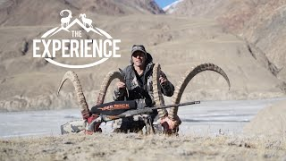 Download Mid Asian Ibex -The Kyrgyzstan Experience with Shikar Safaris Video
