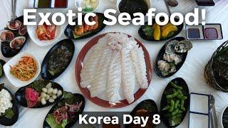 Download Exotic Korean Seafood in Gunsan, South Korea! (Day 8) Video
