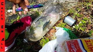 Download PLASTIC BOTTLE FISH TRAP! HILARIOUS Dollar store fishing challenge Video