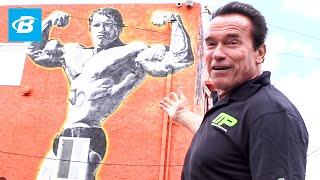 Download Arnold Schwarzenegger's Venice Beach Car Tour | Arnold Schwarzenegger's Blueprint Training Program Video