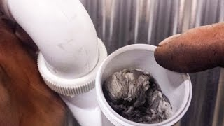 Download Trick to unclog pipes Video