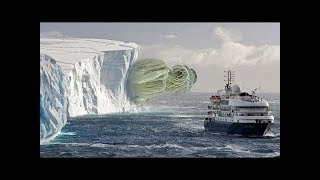 Download 10 Most Incredible Things Found in Antarctica Video