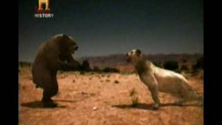 Download Mundo Jurásico - Bestias de la era de hielo - Parte 5 de 6 Video