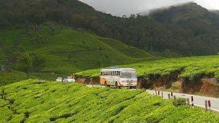 Download Munnar Kerala | Waterfalls | Tea garden | Dam | Fog | Spice garden Video