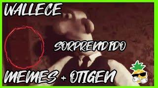 Download Origen + Plantilla: Meme de Wallace (Wallace y Gromit) Video