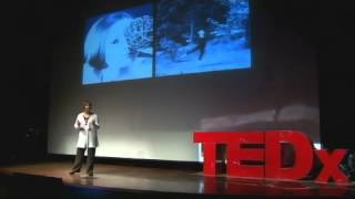 Download Finding Balance: Kim Frerichs at TEDxQuito Video