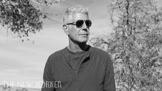 Download Anthony Bourdain on Going from Obama to Trump | The New Yorker Festival Video