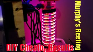 Download DIY Chaeto Reactor, 3 Month Results Video