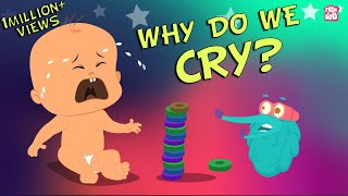 Download Why Do We Cry - The Dr. Binocs Show | Best Learning Videos For Kids | Peekaboo Kidz Video