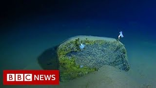 Download Mariana Trench: Record-breaking journey to the bottom of the ocean - BBC News Video