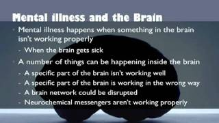 Download Understanding the Biology of Mental Illness Video
