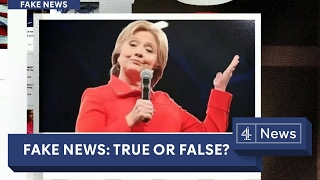 Download Fake news exposed: can you tell what's real? Video