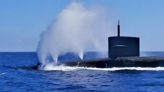 Download Dolphins Swimming With Nuclear Submarine USS Pennsylvania (SSBN 735) Video