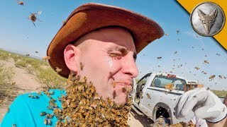Download 3000 BEES ATTACK MY FACE! Video