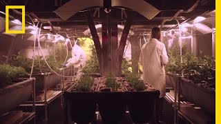 Download Growing Food on Mars | MARS: How to Survive on Mars Video