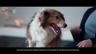 Download PURINA® PRO PLAN® Lizak- Zobacz Opti efekty. Video