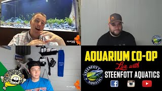 Download Breeding fish for Profit Live Stream with a Special Guest. Video