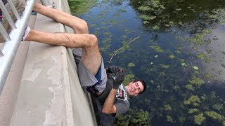 Download 4K Feeding The Furry Turtle & His 10 Friends UPSIDE DOWN! Video