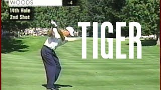 Download Tiger Woods Swings at NEC Invitational 2002 Video