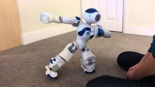 Download Nao Robot Falling Over and Getting Up Video