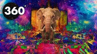 Download 360 (VR) VIDEO - Psychedelic Safari - Summer MIND CHILL 360 Video