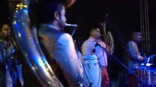 Download Rogelio Torres en jaripo Video