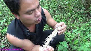 Download Primitive technology - Primitive skills catch big fish and cooking fish in bamboo - Eating delicious Video