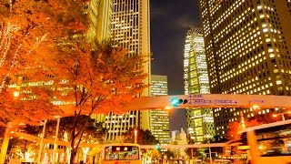 Download [ 4K Ultra HD ] 東京の紅葉 Autumn Color in TOKYO (3-axis gimbal stabilizer) Video