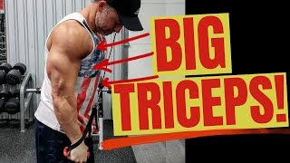 Download Full Triceps Workout (At Gym For Men Routine) Video