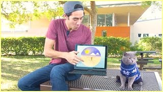 Download Top Zach King magic tricks with pet - Best funny animals magic vines Video