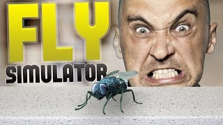 Download Fly Simulator - Pizza & Chill? - Man vs Flies - Fly Simulator Gameplay Highlights Video