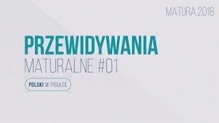 Download Matura z języka polskiego - Sarmatyzm. PRZEWIDYWANIA MATURALNE! Polski w pigułce. Video